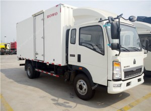 HOWO 3 Ton Light Van Truck