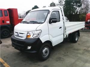 SINOTRUK CDW 2T Light Dump Truck