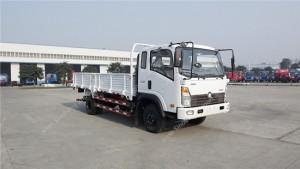 SINOTRUK CDW 8T Lumière Cargo Truck