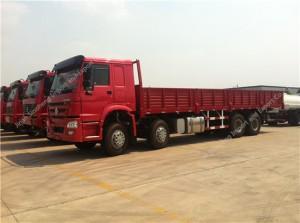 SINOTRUK HOWO 8X4 266hp Cargo Truck