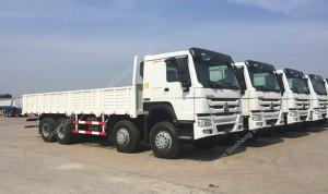 SINOTRUK HOWO 8X4 290hp Cargo Truck